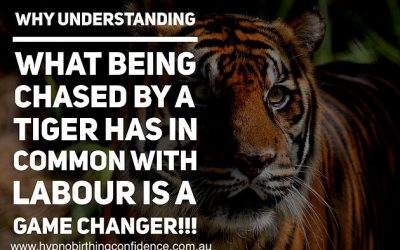 Why UNDERSTANDING what being chased by a TIGER has in common with LABOUR is a GAME CHANGER!!!